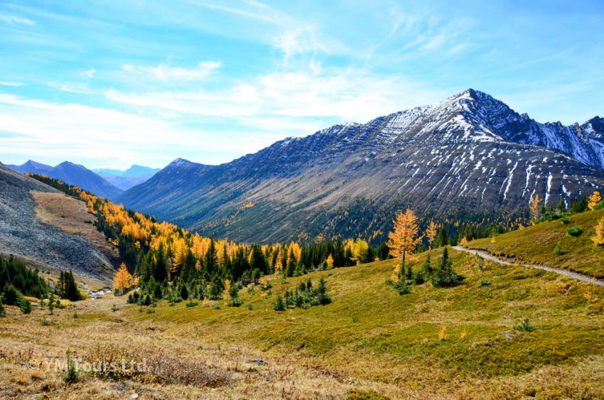 シーズンを通して楽しめる3つのベスト・ハイキングコース_d0112928_07114583.jpg