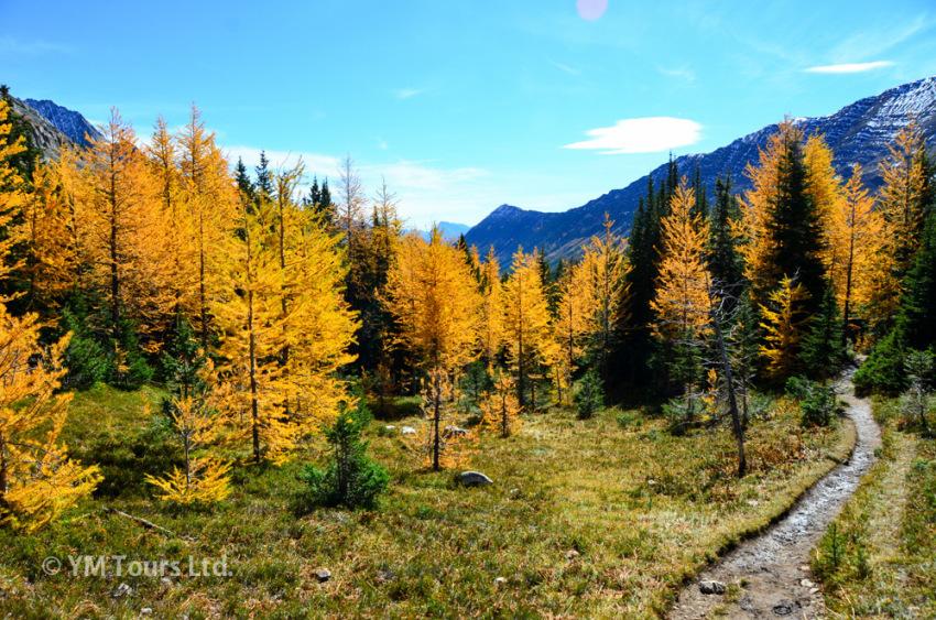 シーズンを通して楽しめる3つのベスト・ハイキングコース_d0112928_07171095.jpg