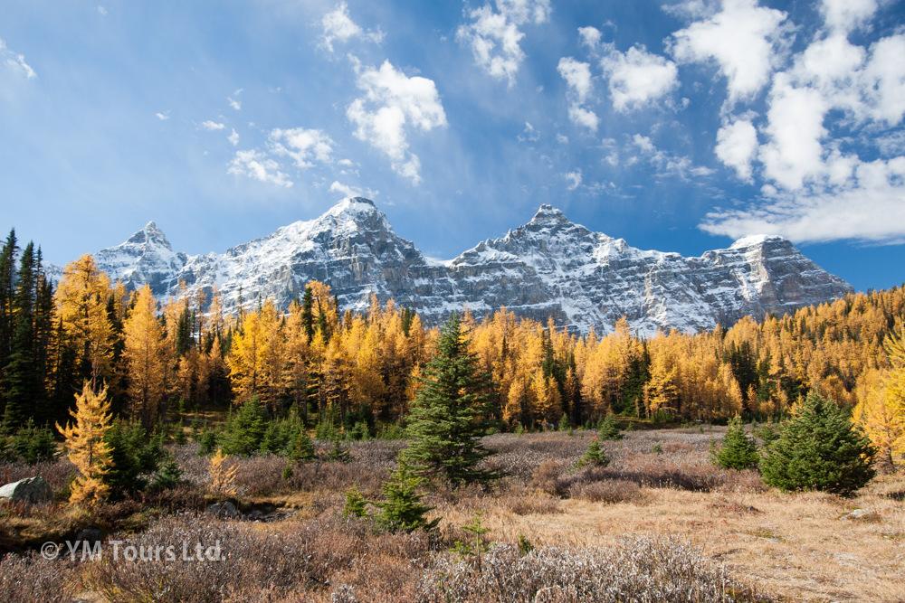 シーズンを通して楽しめる3つのベスト・ハイキングコース_d0112928_07281415.jpg
