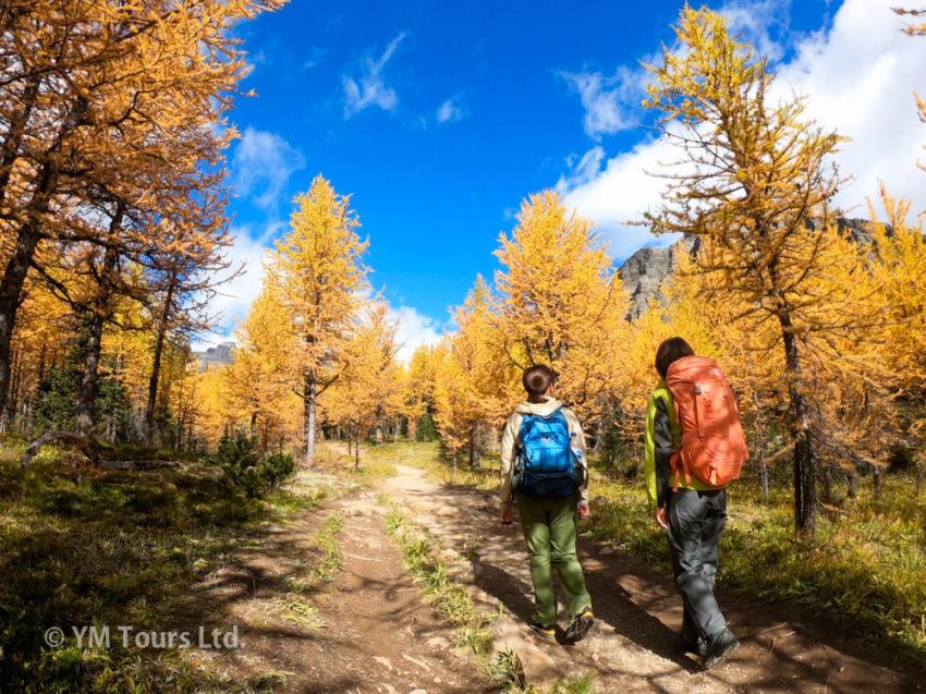 シーズンを通して楽しめる3つのベスト・ハイキングコース_d0112928_07333719.jpg