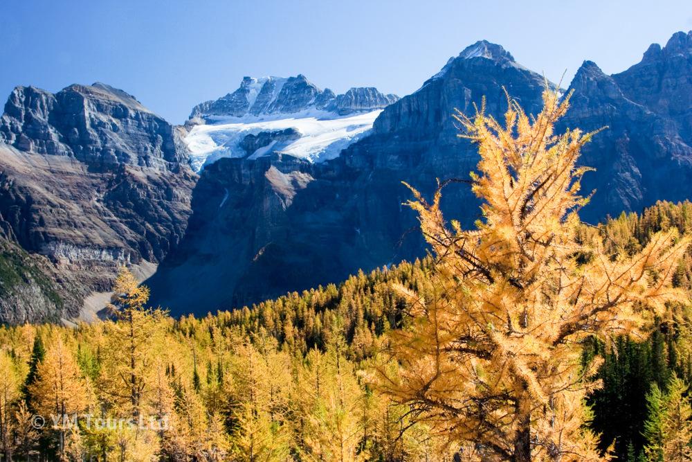 シーズンを通して楽しめる3つのベスト・ハイキングコース_d0112928_08073068.jpg