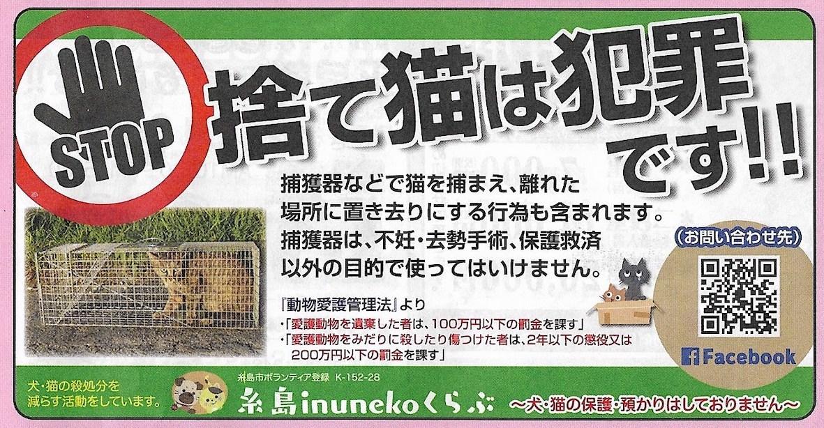 猫を捨てることは犯罪です。_d0073743_18282262.jpeg