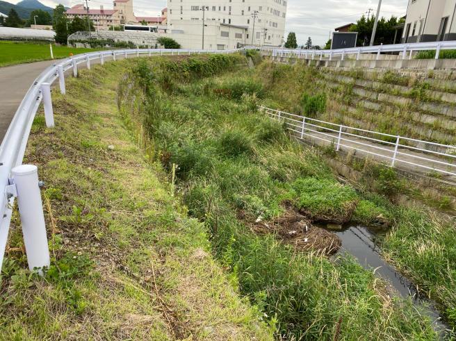 河川の整備_b0199244_14260323.jpg