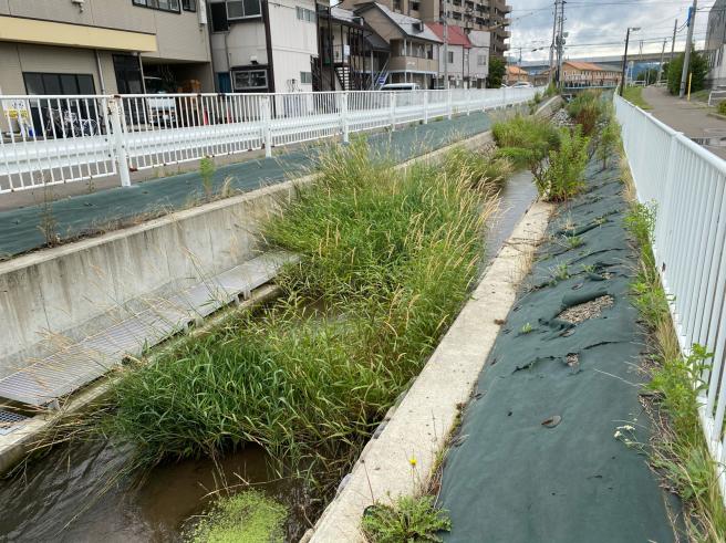河川の整備_b0199244_14260614.jpg