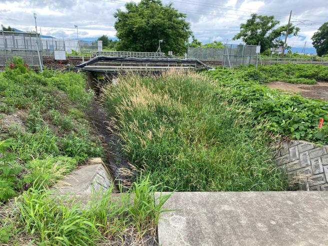 河川の整備_b0199244_14260878.jpg