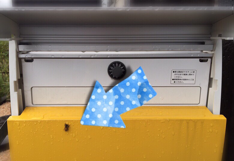 雨宿り蜜蜂。_f0183846_12114589.jpg