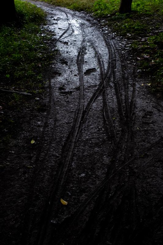 雨の神社_a0261169_11594571.jpg