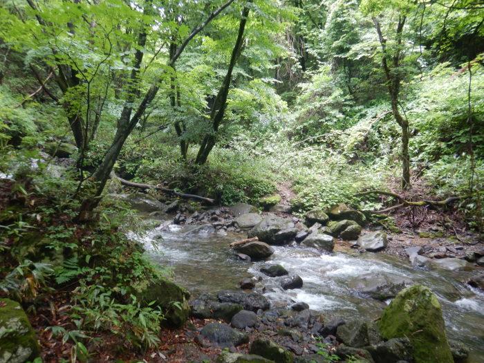 安達太良山・湯川 ~ 2020年7月5日_f0170180_00303817.jpg