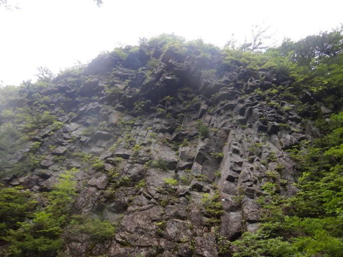 安達太良山・湯川 ~ 2020年7月5日_f0170180_00581753.jpg