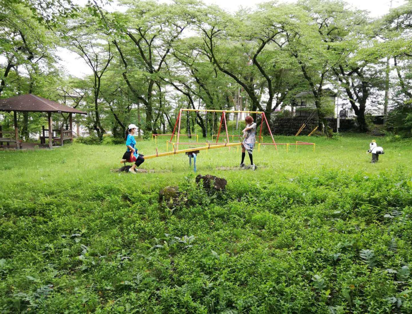 东京的朋友们赴群马前桥体验蔬菜丰收_d0007589_14495460.jpg