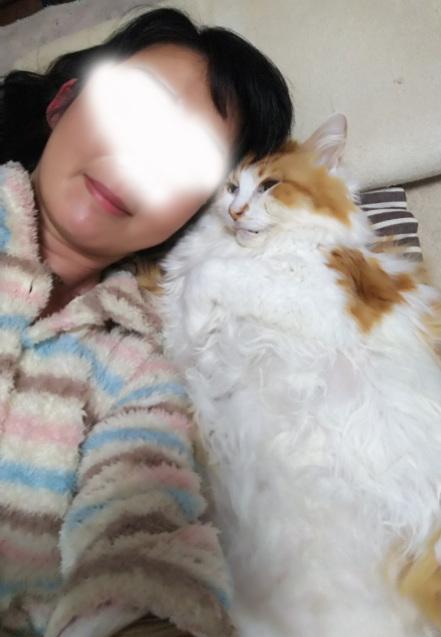 ニコちゃんのこと_b0189509_23314384.jpg