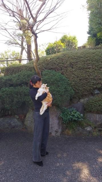 ニコちゃんのこと_b0189509_23342564.jpg