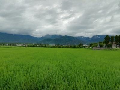 雨は一休み_c0289116_18413385.jpg