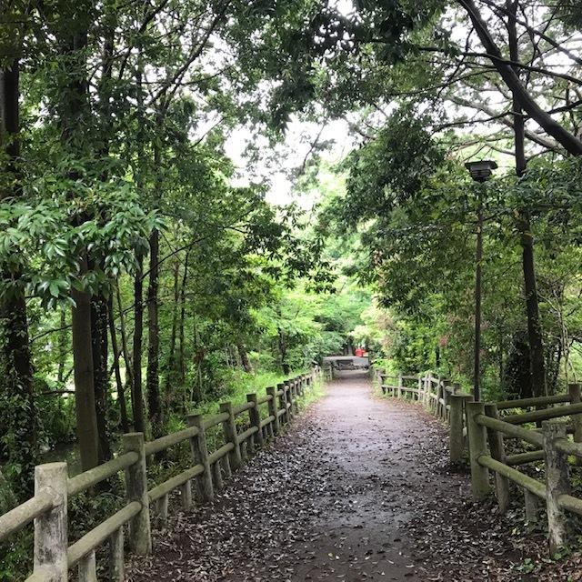 神社の森でボイスヒーリング_d0085018_20320174.jpg