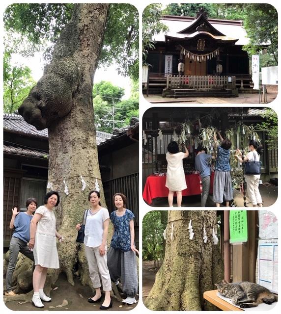 神社の森でボイスヒーリング_d0085018_20322585.jpg