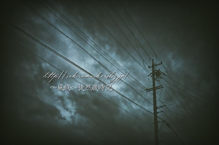 小休止の梅雨空。_f0235723_19304234.jpg