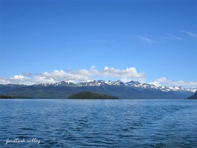 海へ野へ Mooseすね肉ポットロースト_d0356844_12393891.jpg