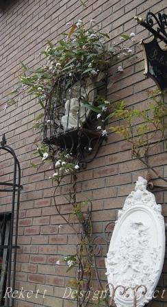 一夜限りの神秘の白い花~❤_f0029571_01060506.jpg