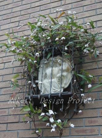 一夜限りの神秘の白い花~❤_f0029571_01064637.jpg
