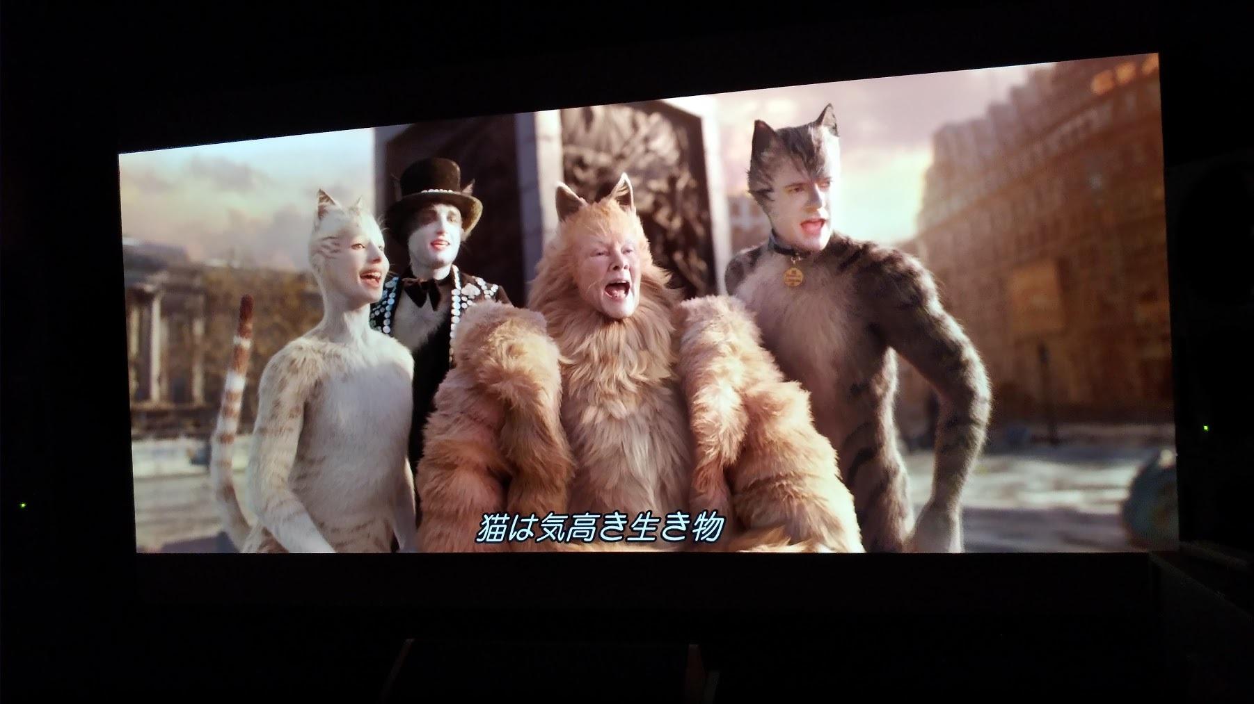 キャッツ Blu-ray_f0098083_07260095.jpg