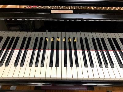 ピアノ体験レッスン再開します_c0252184_1724317.jpg