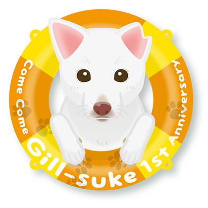 (元)野犬のギルくん、ウチの子記念日1周年,゜.:。+゜_f0094786_20560527.jpg