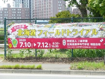初夏の八紘学園へ_b0198109_06423991.jpg