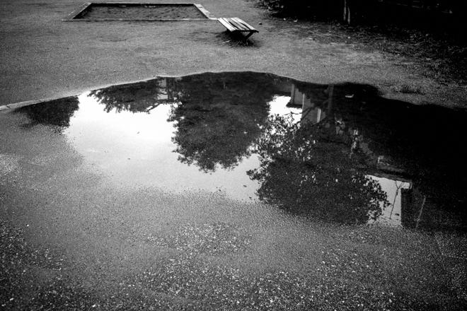 07.09 雨上がり_a0390712_20230993.jpg