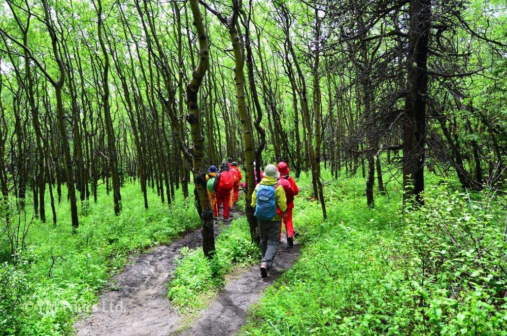 シーズンを通して楽しめる3つのベスト・ハイキングコース_d0112928_03364659.jpg