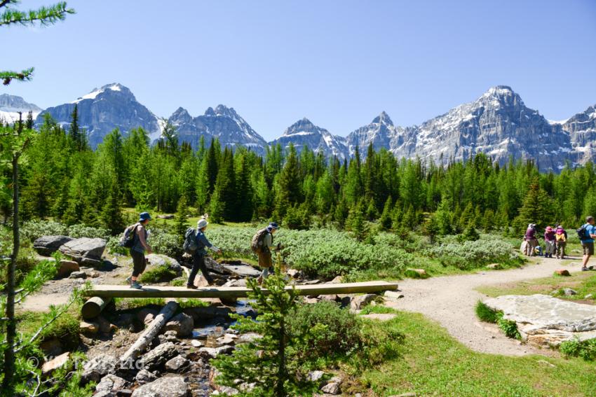 シーズンを通して楽しめる3つのベスト・ハイキングコース_d0112928_03375207.jpg