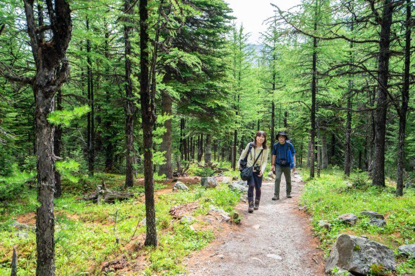 シーズンを通して楽しめる3つのベスト・ハイキングコース_d0112928_15213981.jpg