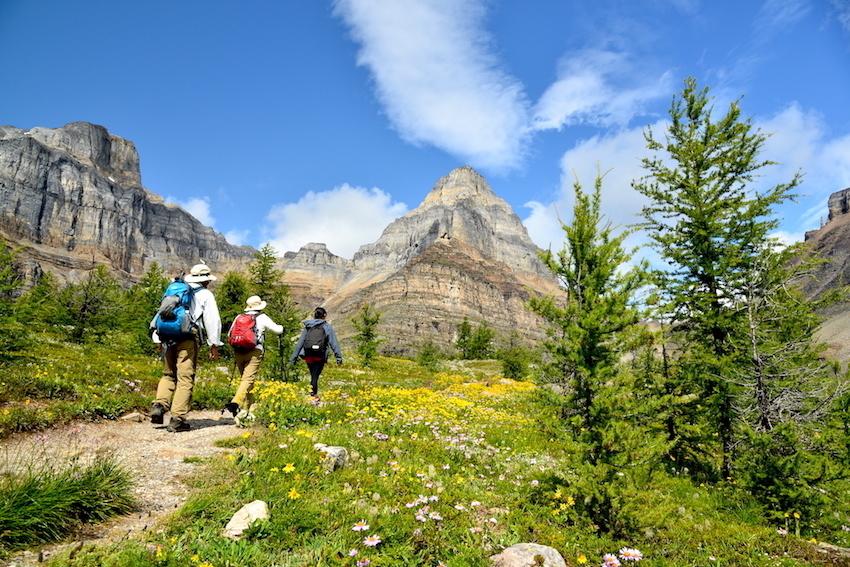 シーズンを通して楽しめる3つのベスト・ハイキングコース_d0112928_15235267.jpg