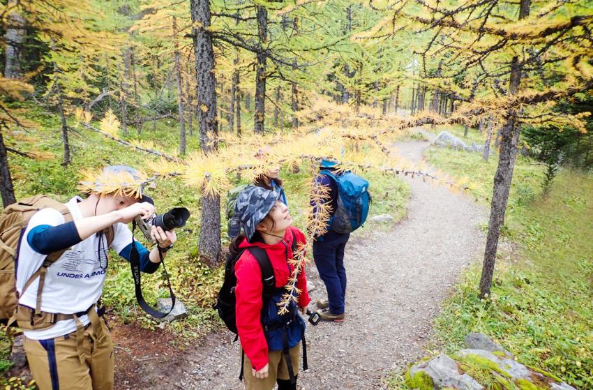 シーズンを通して楽しめる3つのベスト・ハイキングコース_d0112928_15262005.jpg