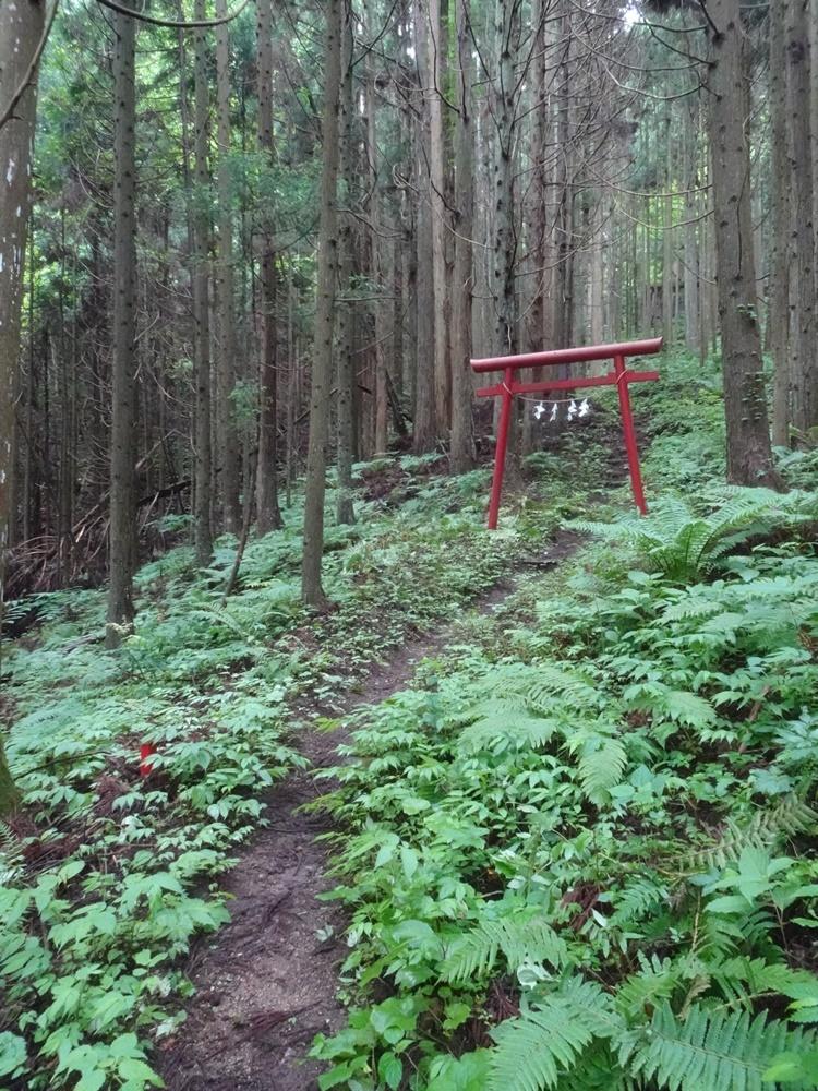 程洞稲荷神社例祭に奉仕_c0111229_18582932.jpg