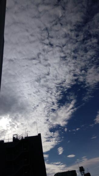 空気感染の可能性も_b0217741_22130362.jpg