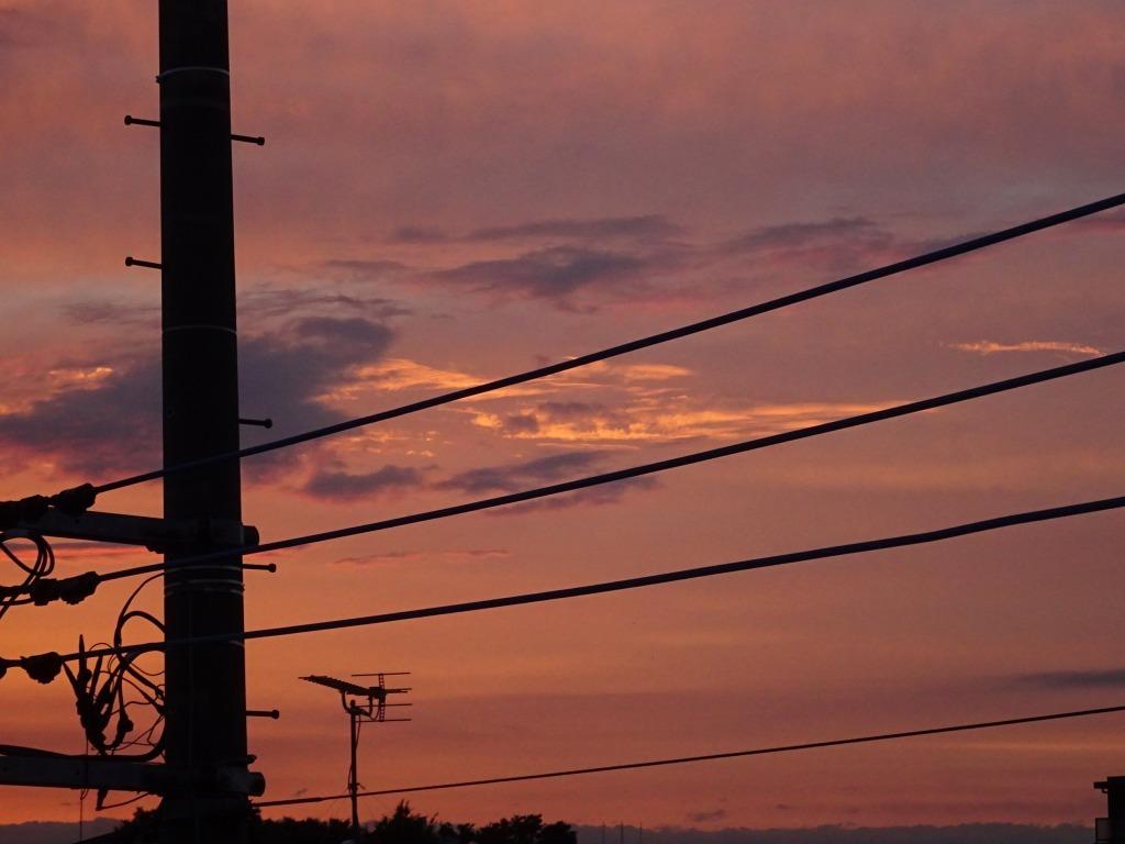 昨日久々に青空、夕方から日没は茜空_d0061678_15211812.jpg