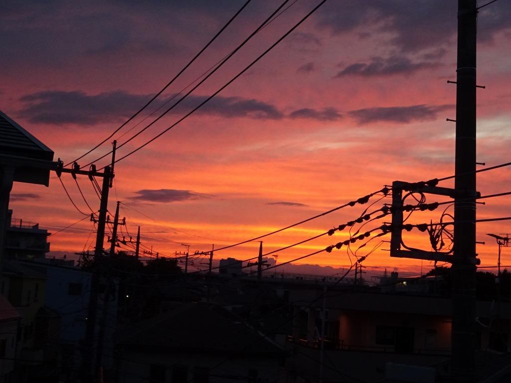 昨日久々に青空、夕方から日没は茜空_d0061678_15212406.jpg