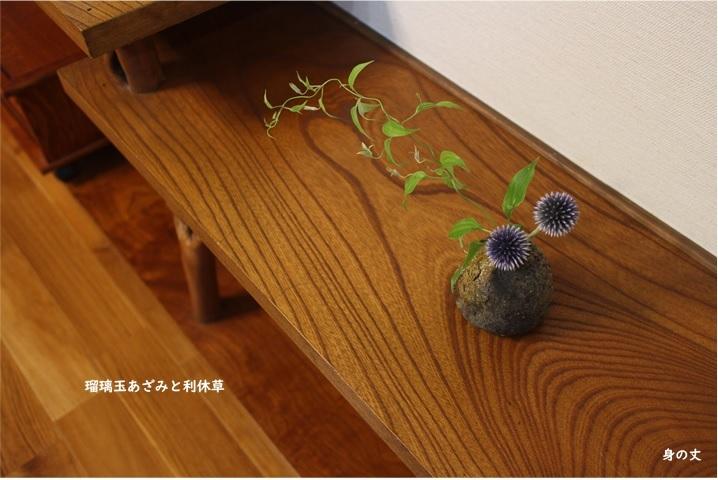丁度いい花たち_e0343145_22390176.jpg