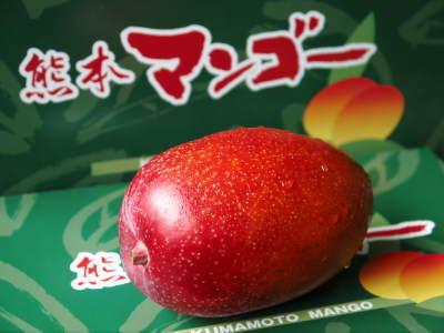 樹上完熟アップルマンゴー お待たせしました!樹上完熟マンゴーのご注文順の発送をスタートしました!_a0254656_17100273.jpg