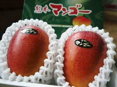 樹上完熟アップルマンゴー お待たせしました!樹上完熟マンゴーのご注文順の発送をスタートしました!_a0254656_17351381.jpg