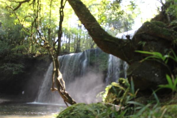 美しかった「鍋ケ滝」_a0174458_23214593.jpg