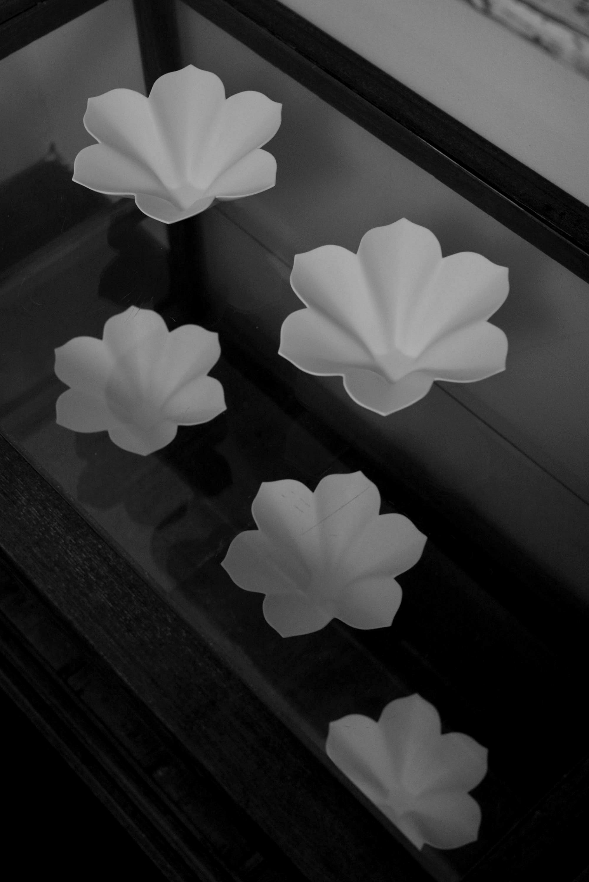 「若杉聖子展 PORCELIAN LOTUS」7日目-3_d0087761_19532834.jpg