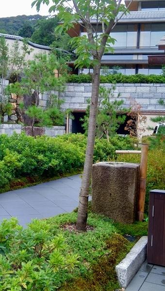 レーズン山食そして京都墓参、寄り道_d0154716_11380395.jpg