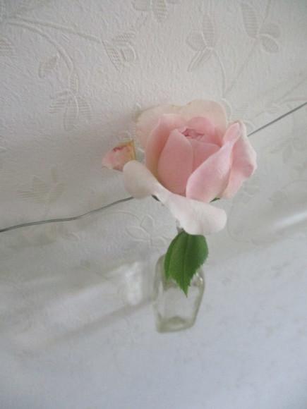 お花を飾って3人でランチ会_a0279743_22022130.jpg