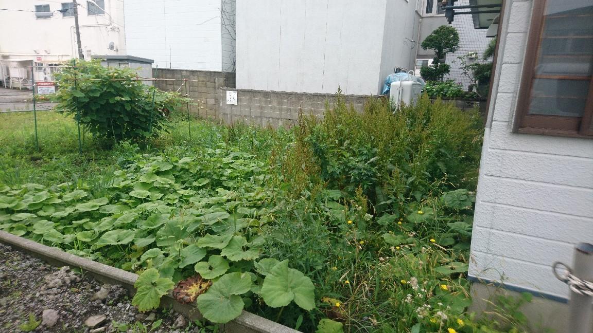 亀田町_b0106766_10441081.jpg