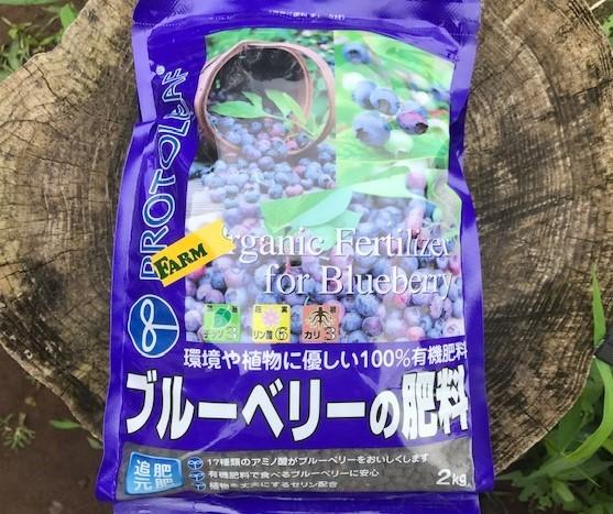 六国見山のブルーベリーに専用肥料を追肥7・11_c0014967_21361711.jpg