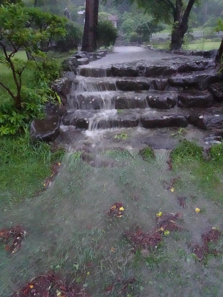 未明から大雨_c0111229_19141211.jpg