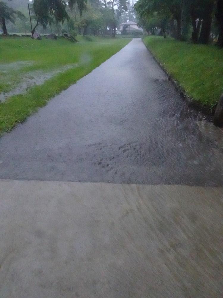 未明から大雨_c0111229_19144142.jpg