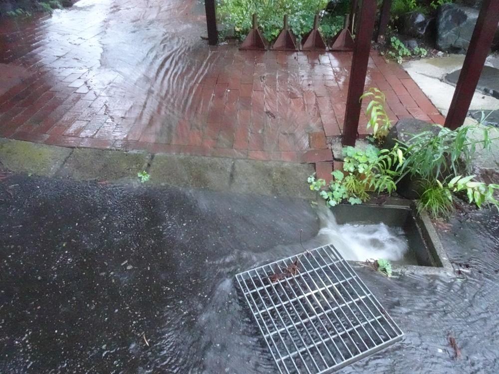 未明から大雨_c0111229_19153608.jpg