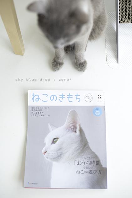 ねこのきもち 8月号 - sky blue drop~14ニャンズトネコハウス//